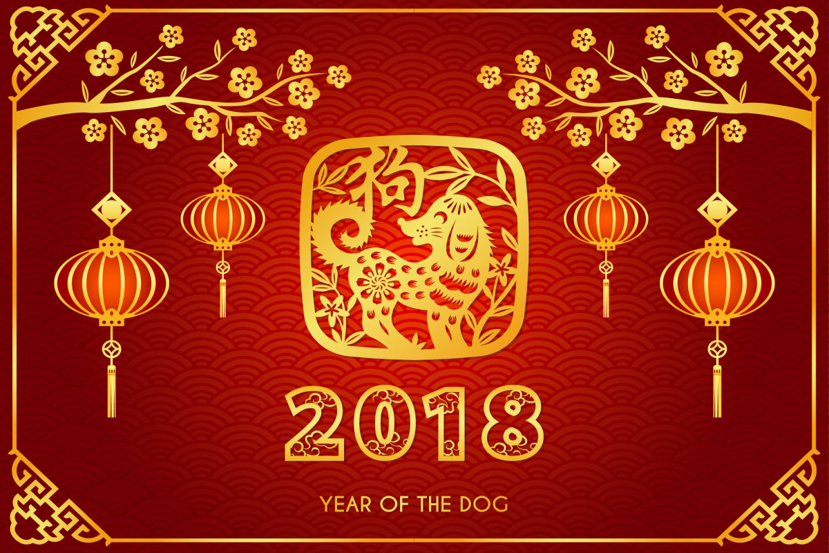 news anno del cane