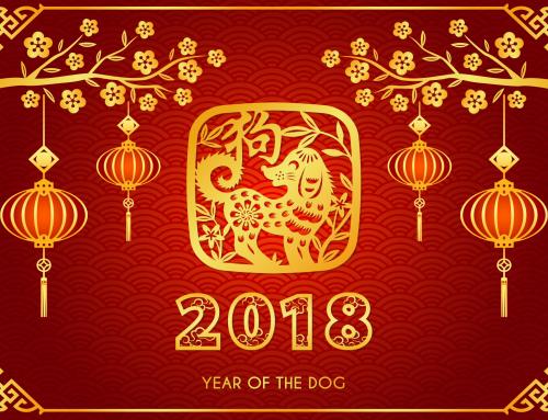 Questo è l'anno del Cane
